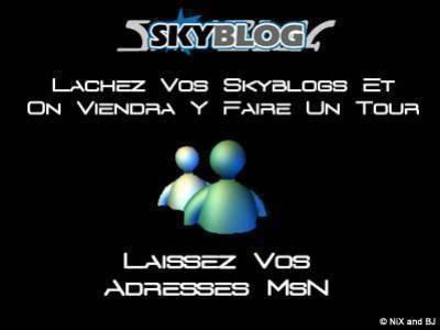 ●~●~● LACHEZ VOS SKYBLOGS & VOS ADRESS MSN...●~●~●