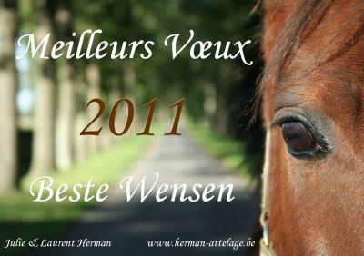 Bonne année 2011!
