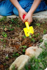 Utiliser les cendres de bois dans le jardin