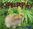 Photo de kiperpay