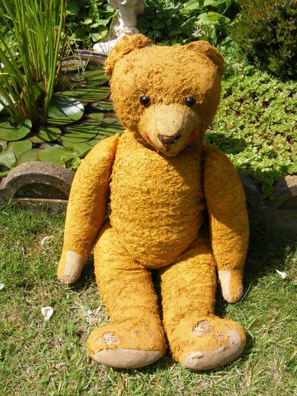 Mon ours Baron viens d'arriver de l'allemagne le voila sortis de son embalage je le trouve adorable mais très fatigué,je vais mon occupée de suite.