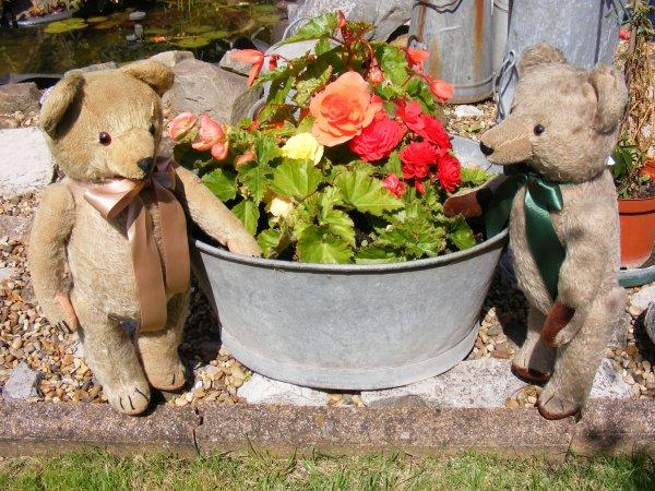 Rubens est tout content de retrouvé un frère un peu plus jeune que    lui,ils ont un tas de chose à se  raconté quel bonheur!!!
