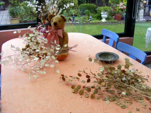 Lazare vous montre la monai du pape,c'est un travail de patience pour    les préparé pour les bouquet   sec++++++