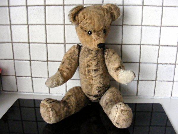 Voici mon Spartakus à son arrivé,après une grande restauration très dur,le voila de retour un  ours en bonne état,très belle journée à vous tous+++++++