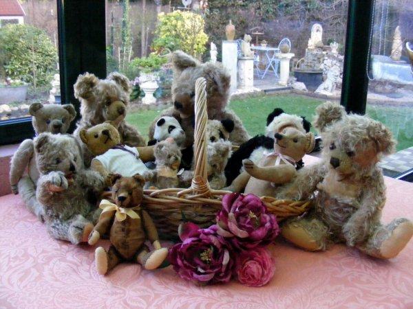 Mes ours vous souhaites une bonne soirée à vous tous++++