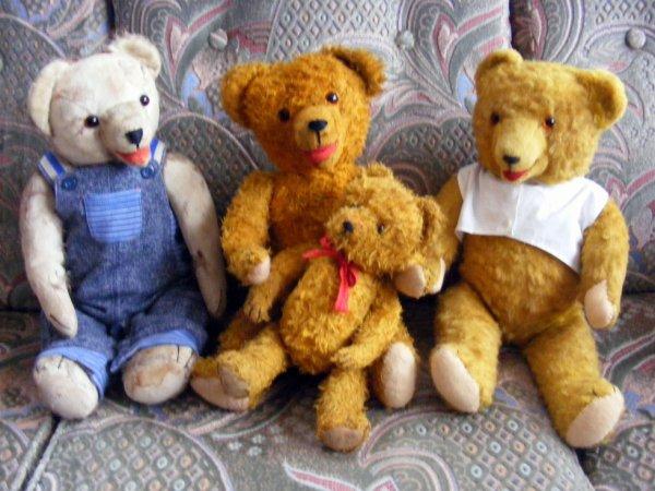 Mes trois ours bouche ouvert 2016,sont ils pas beaux?