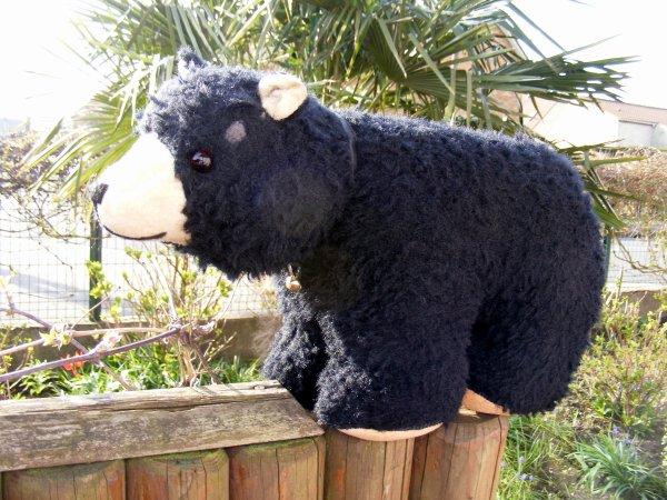 Je vous montre mon dernier venue Ours polaire Spartakus ours Allemand remplis de paille 60 cm sur 30 cm de haut,il vous souhaite une très belle journée à vous tous+++++