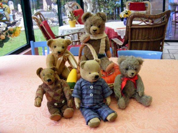 Mes ours vous souhaites une belle journée à vous tous+++++