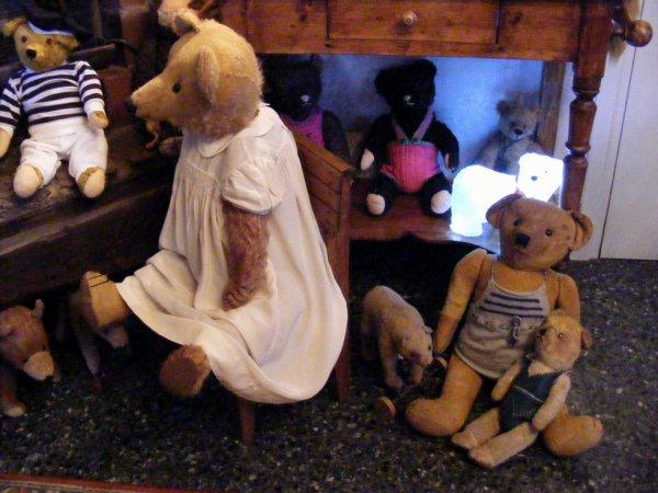 voici quelques ours que j'aime beaucoup,belle soirée à vous tous ++++