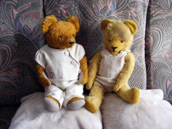Belle journée à vous tous avec mes deux ours+++++