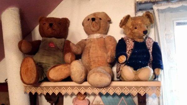 Mes ours vous souhaites un agréable dimanche à vous tous++++