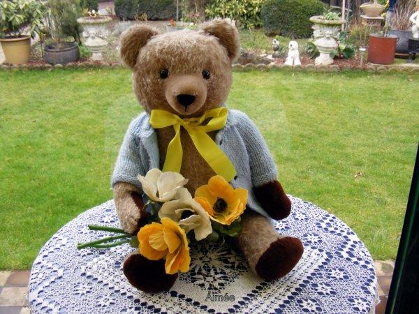 Mon ours Aimée  que je possède depuis 4 ans souhaite bonne fête à tout les Aimée++++