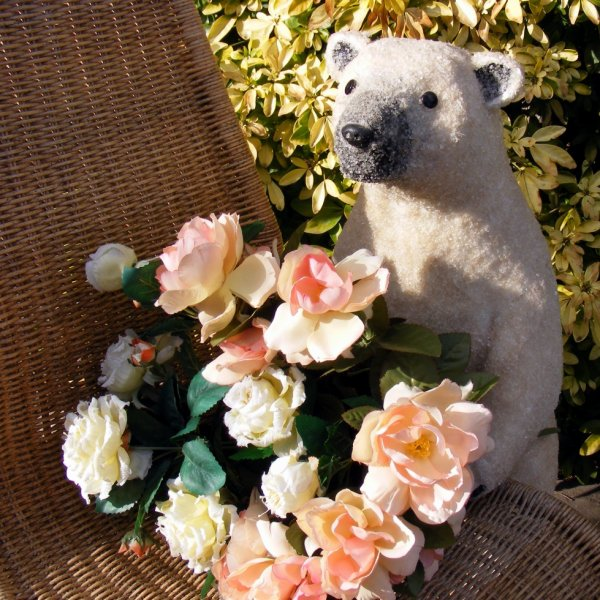 mon ours polaire vous envoi des fleurs et vous souhaites une belle journée à vous tous++++
