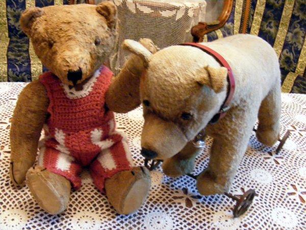 Un petit coucou du soir de mon ours Schubert à vous tous++++