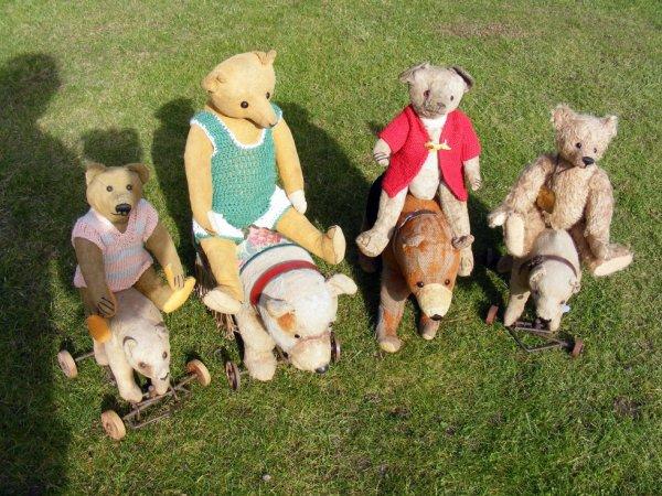 Mes ours dehors vous souhaites un très beau weekend à vous tous++++