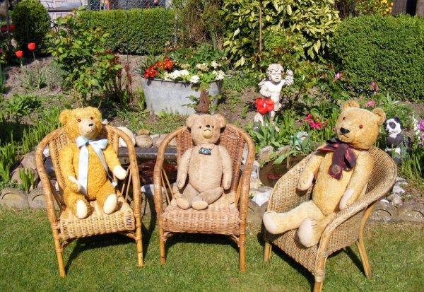 Mes ours profites du soleil!très beau weekend à vous tous+++++