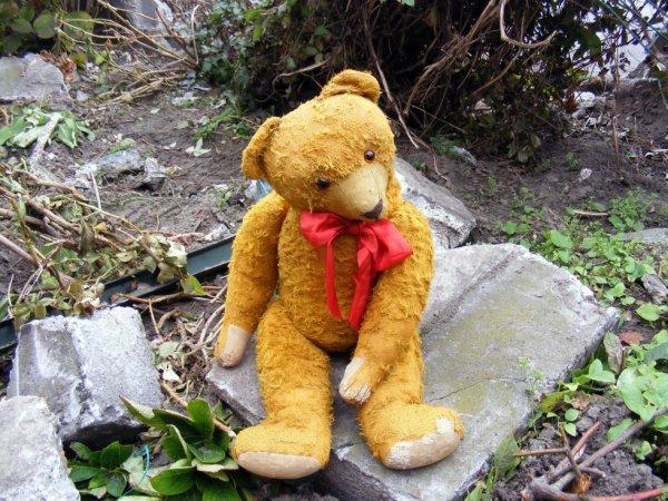 Mon ours Baron vous envoi un petit coucou à vous tous++++