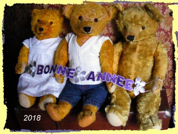 Mes ours et moi nous vous souhaitons une merveilleux année 2018+++