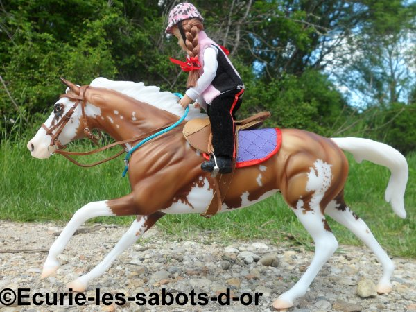 Quercy : Photo Show le cheval au travail