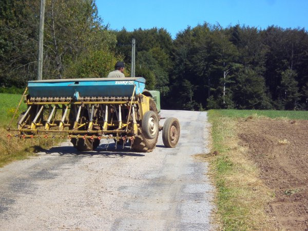 Semi d'herbe avec un Fendt Turbomatik 105 S