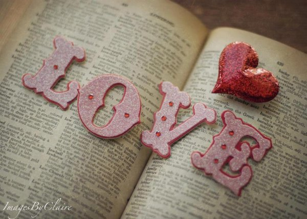 evry one they can't live without love