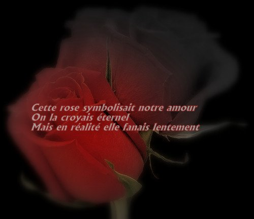 ma phrase :)