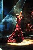 Photo de miss-flamenco12