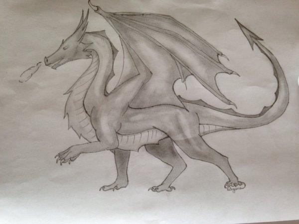 My Draw !