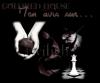 Goldred House, partie littéraire Mon avis sur Twilight.