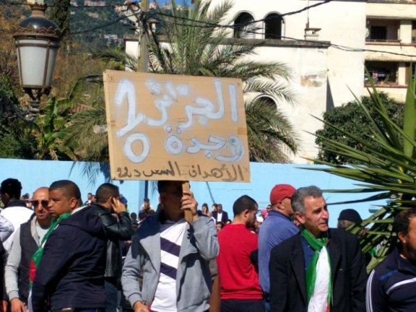 Quelques photos prises lors de la manifestation contre le système . . .
