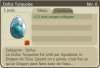 Achats Dofus Turquoise!