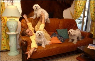 prissou adore les chiens