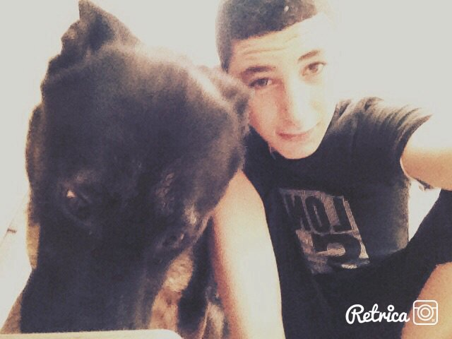 Mn chien Bréno