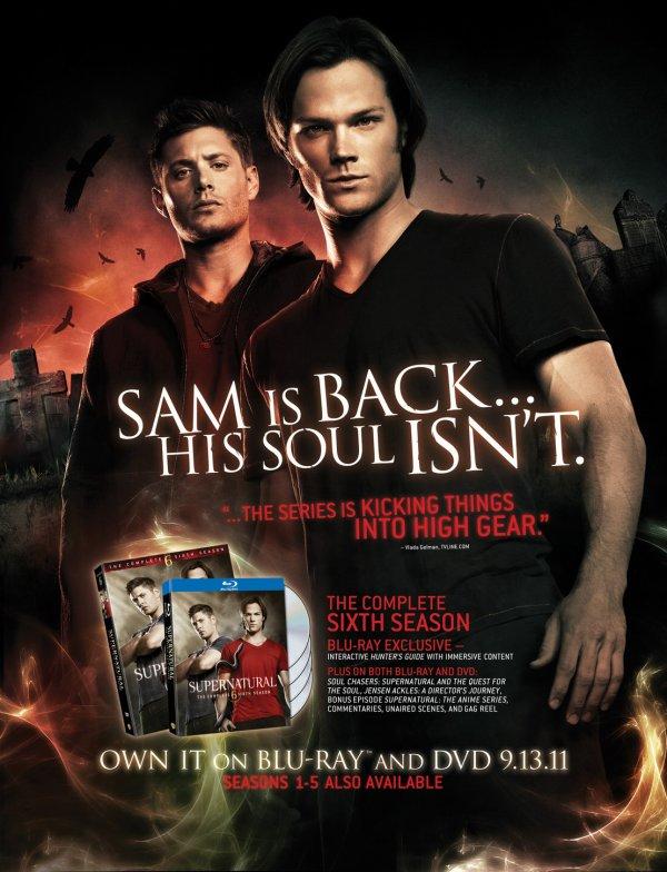 DVD de la saison 6 aux U.S.A