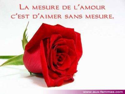 la mesure de l'amoure c'est d'aimer sans mesurer