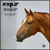 expir25