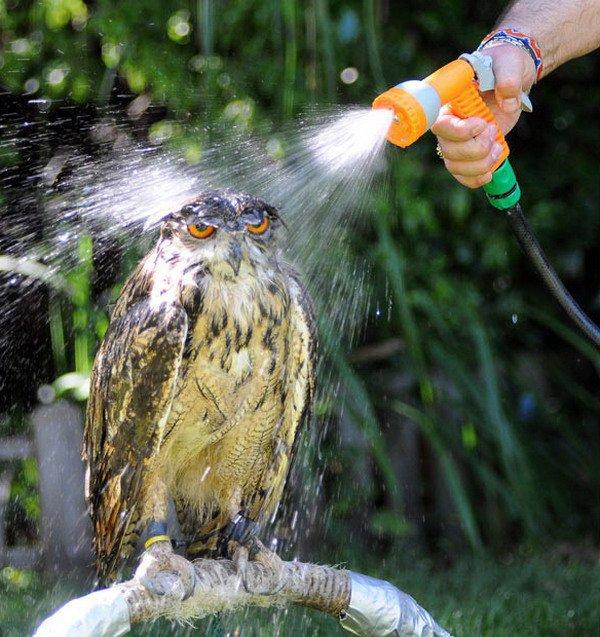 Ma douche de ce matin lol plus d'eau chaude en panne :-(