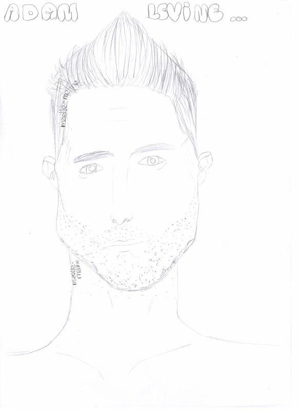 Création 60 - Adam Levine