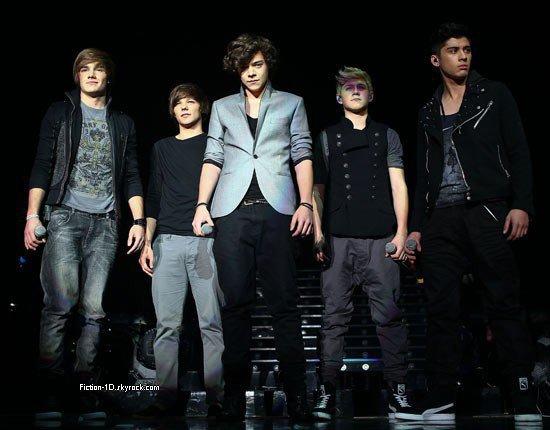 """One Direction dans """"La Ferme Jérôme"""""""