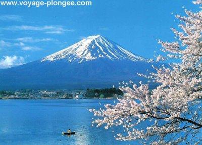 Pour tous ceux qui aiment le Japon et le soutiennent!!!