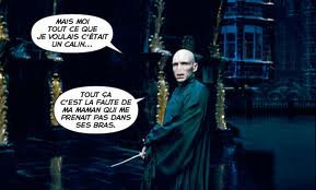 Bienvenue sur le blog de potter-fan1!