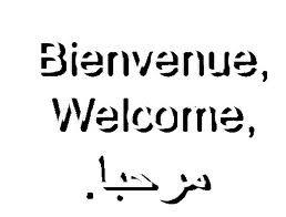 Bienvenue ...
