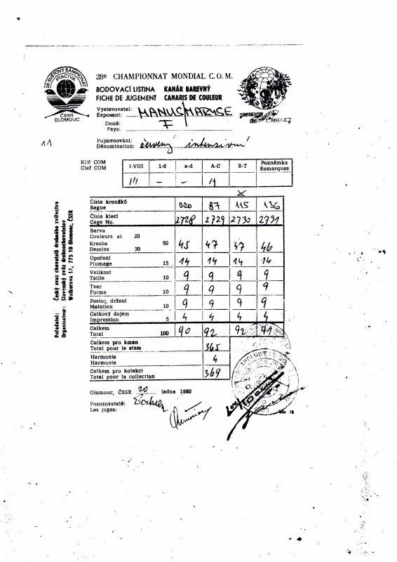 MES DEBUTS et mon Premier CHAMPION DE FRANCE FFO 1984 (stam rouge schimmel)