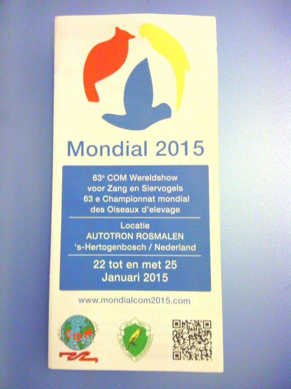 Mondial 2015 Pays bas