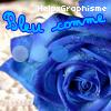 HelpxGraphisme