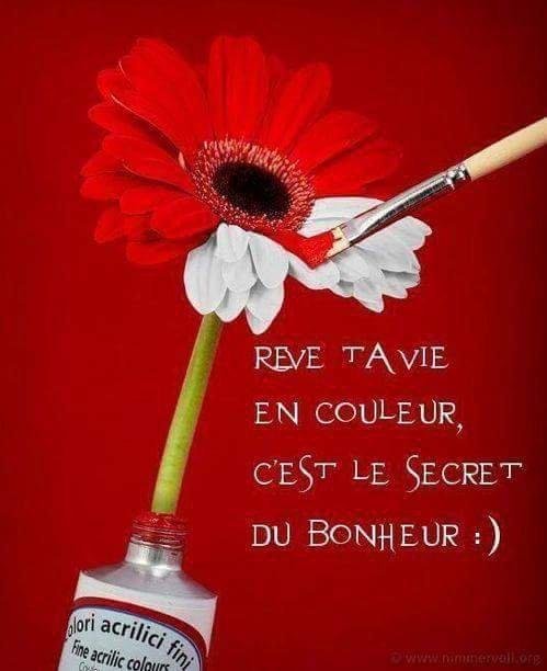 Bonjour à tous et mes amitiés les amis !