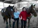Photo de x3-Favourites-Horses-x3