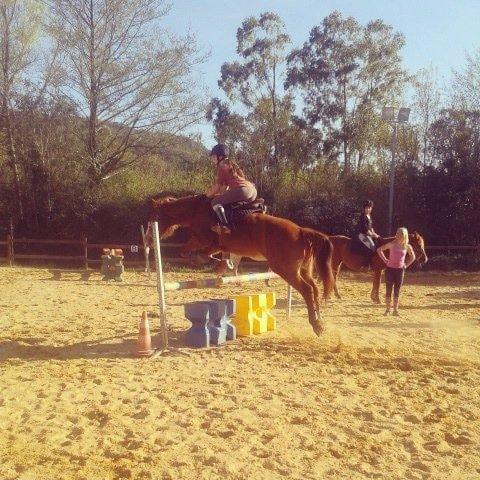 « Monter à cheval donne un goût de liberté. » <3