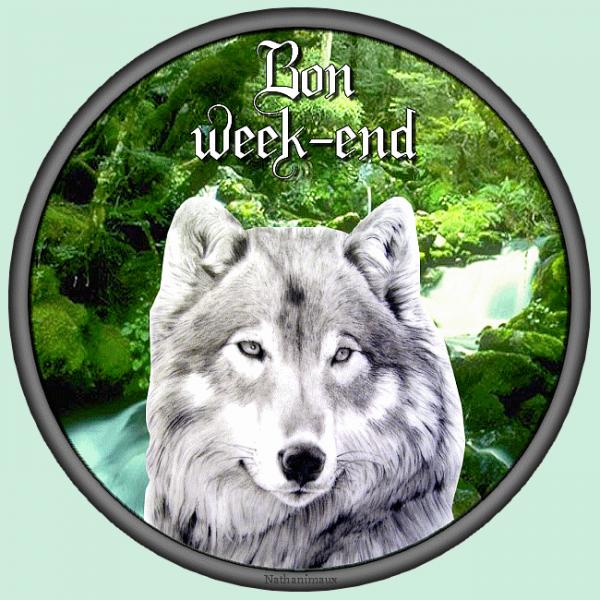 BON WEEK-END  et BONNE VISITE