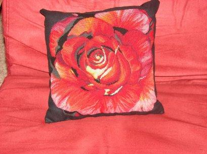 Rose espagnole.